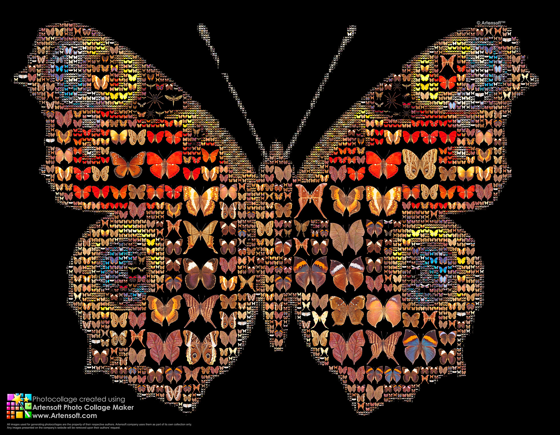 Photo Mosaic/Collage software for Mac?: Mac Talk Forum: Digital
