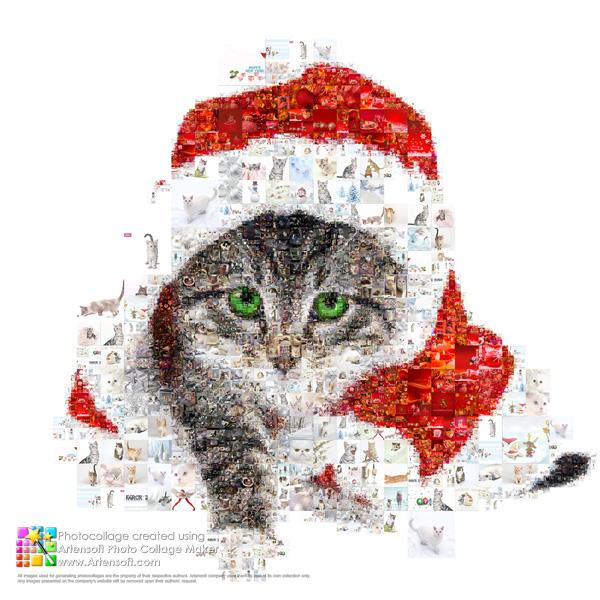 Фото коллаж от Artensoft Photo Collage Maker - лучший подарок к Новому году!