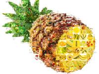 """Яркий и сочный """"фруктово-овощной"""" коллаж в виде ананаса"""
