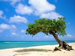 Основа Фотоколлажа Дыхание моря