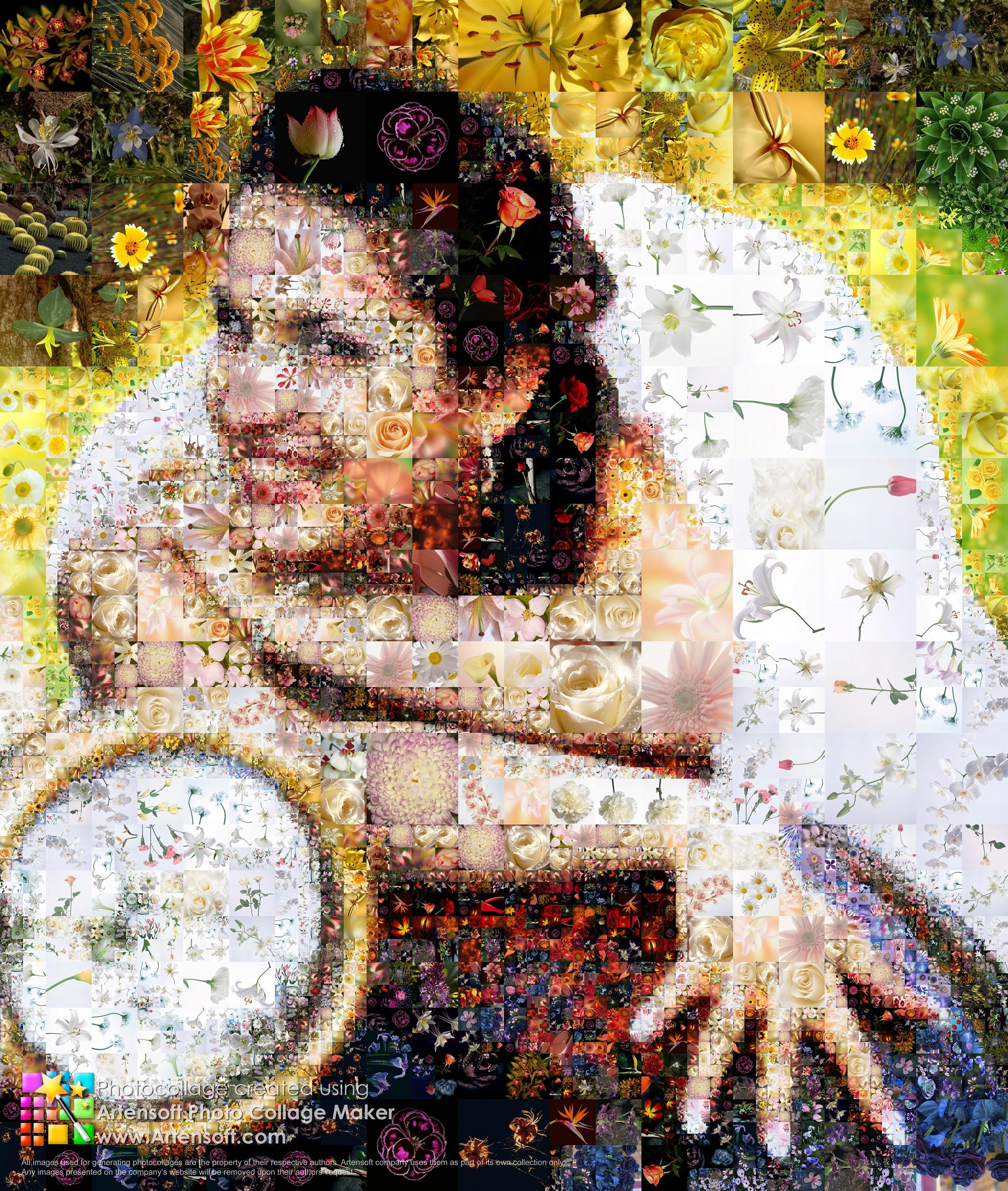 Leuchtende Und Uppige Collage Aus Blumen Zur Hochzeit Beschreibung Programmparameter Fur Das Erstellen Detailansicht Video Auflosung Beim Speichern