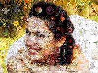 Leuchtende und üppige Collage aus Blumen zur Hochzeit.