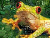 Ква-фотосессия царевны-лягушки