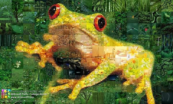 Фотоколлаж Царевна-лягушка
