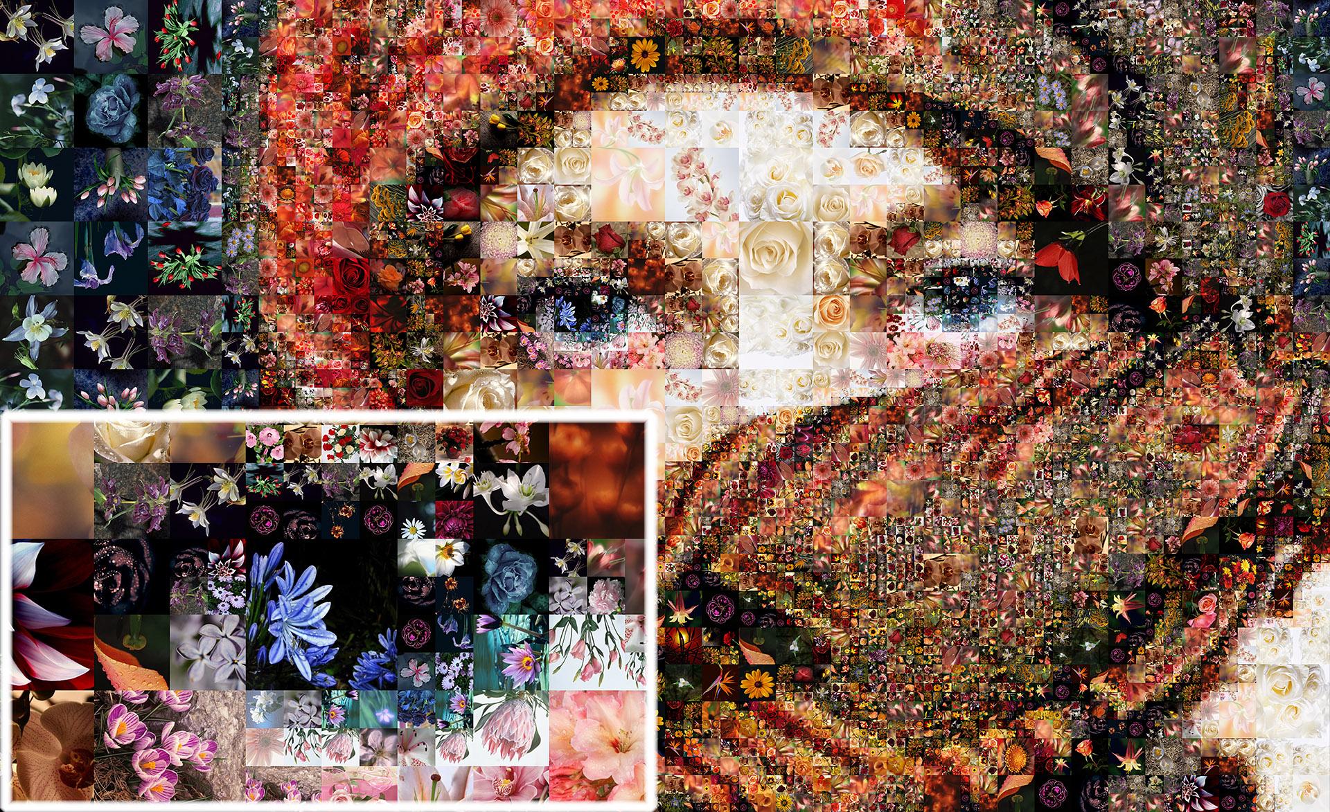 Auf Einfache Art Selbst Fotocollagen Ohne Photoshop Erstellen Mit Dem Masterprogramm Zur Modellierung Von Collagen Photo Collage Maker