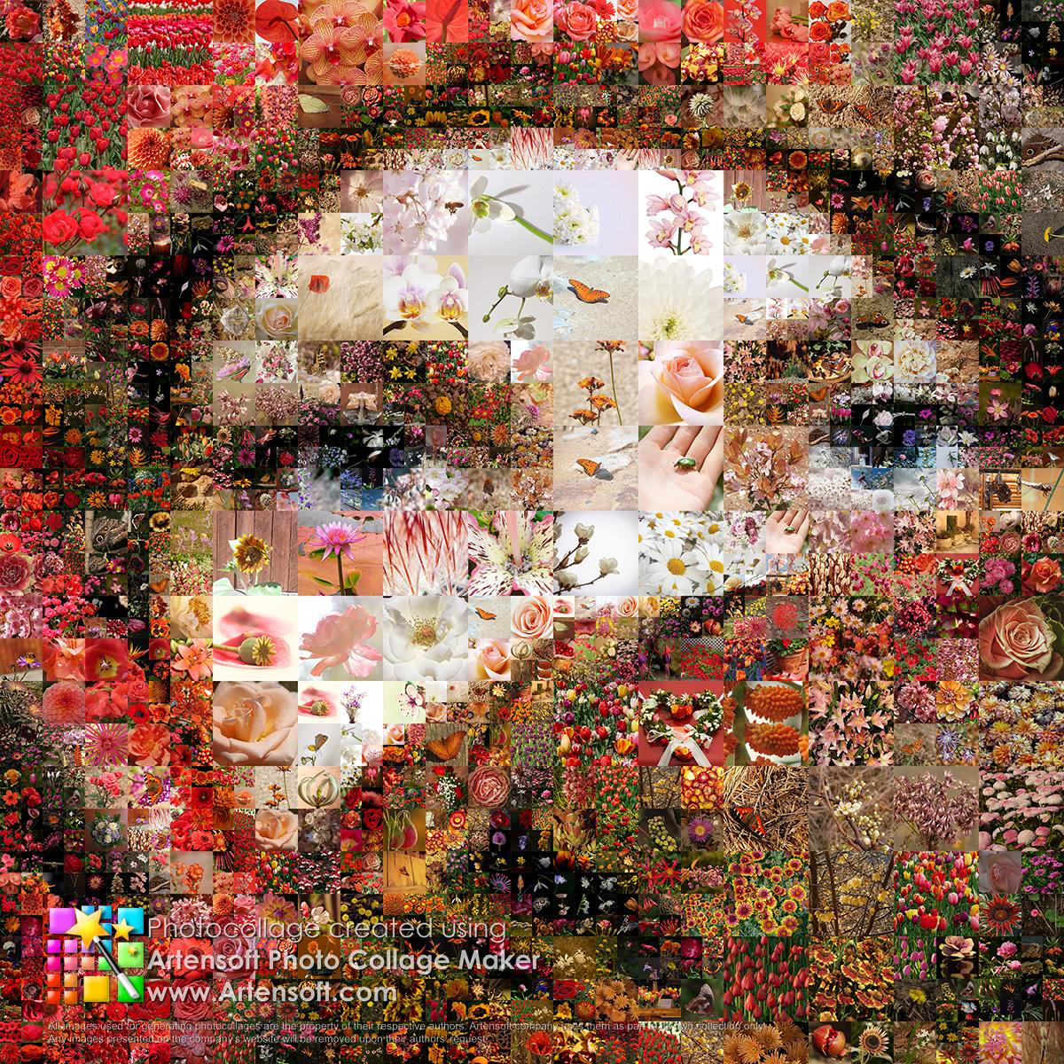 Artensoft Photo Collage Maker Welches Master Bild Eignet Sich Am Besten Fur Eine Gute Collage