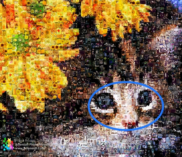 The photomosaic created Artensoft Photo Mosaic Wizard