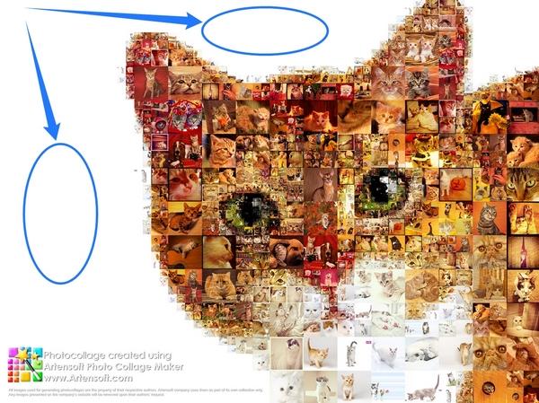 Artensoft Photo Collage Maker ist das beste Programm für Fotocollagen, Fotocollage auf weißem Hintergrund