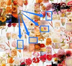 Das Artensoft Photo Mosaic Wizard Fotomosaik besteht aus Elementen derselben Größe