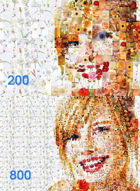 Mosaic Wizard: Detailing depends on the selected amount of component mini-images.
