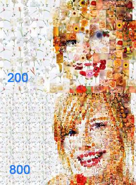 Artensoft Photo Mosaic Wizard: Je mehr Elemente, umso höher die Detailgenauigkeit des Fotomosaiks