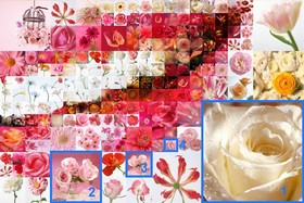 Mit Artensoft Photo Collage Maker kann zwischen bis zu fünf Ebenen ausgewählt werden