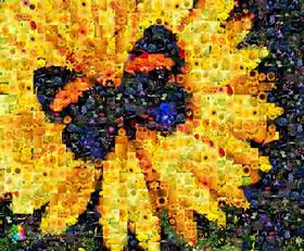 Im Programm Artensoft Photo Mosaic Wizard entsteht das Fotomosaik aus dem gesamten Bild
